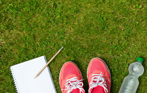 Journaling Toward Your Goals